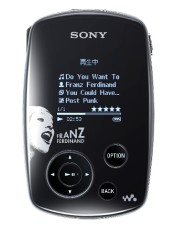 SONY NW-A1000